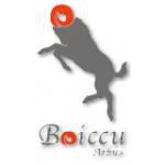 Boiccu